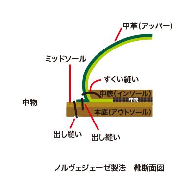 seiho3.jpg