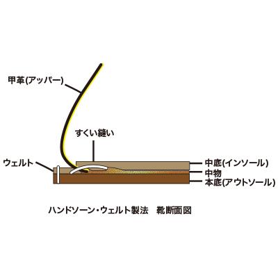 seiho1.jpg